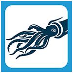 picto blog calamar